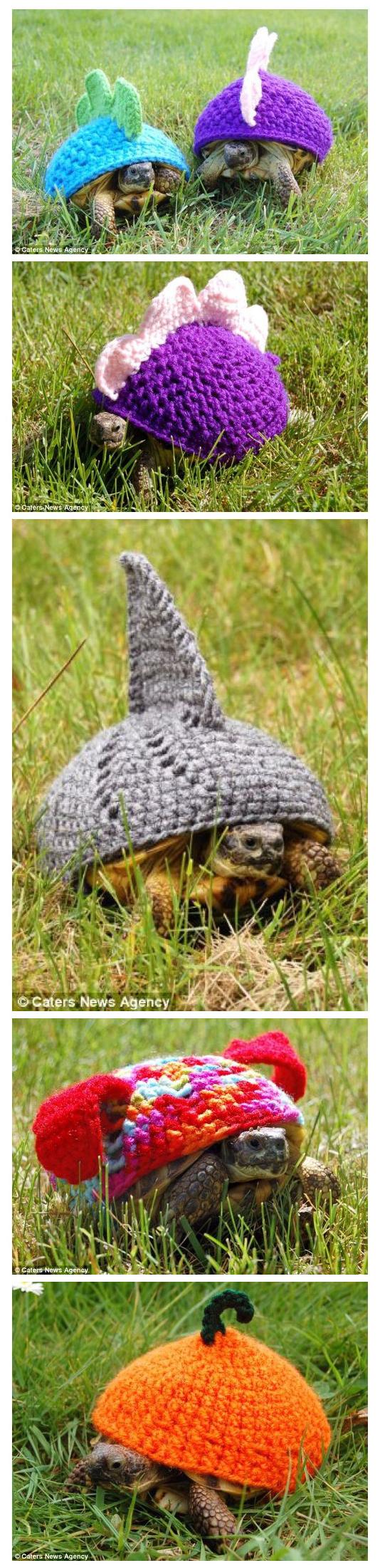 Moda para tortugas en ganchillo crochet.